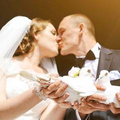 Hochzeitstauben Sachsen - Hochzeitstauben in Dresden, Chemnitz und Leipzig-Halle